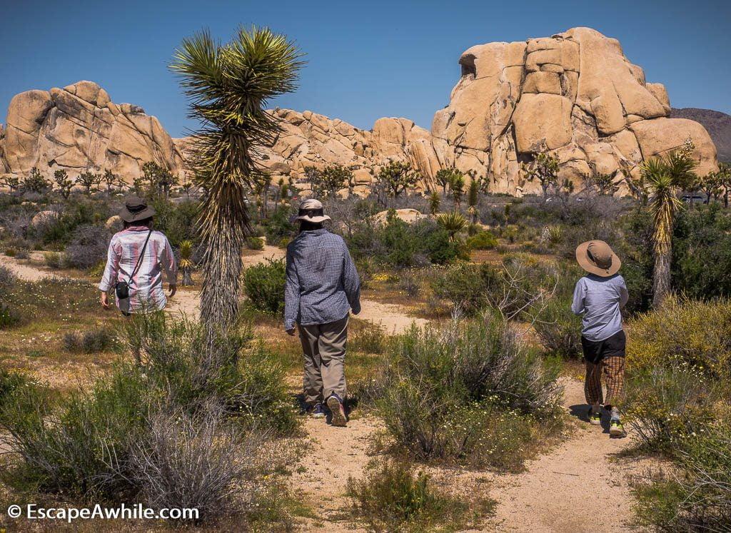 Hidden Valley loop walk, Joshua Tree national park.
