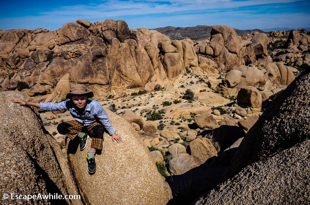 Another exploratory climb to enjoy the views over valley, Split Rock loop walk, Joshua Tree NP.