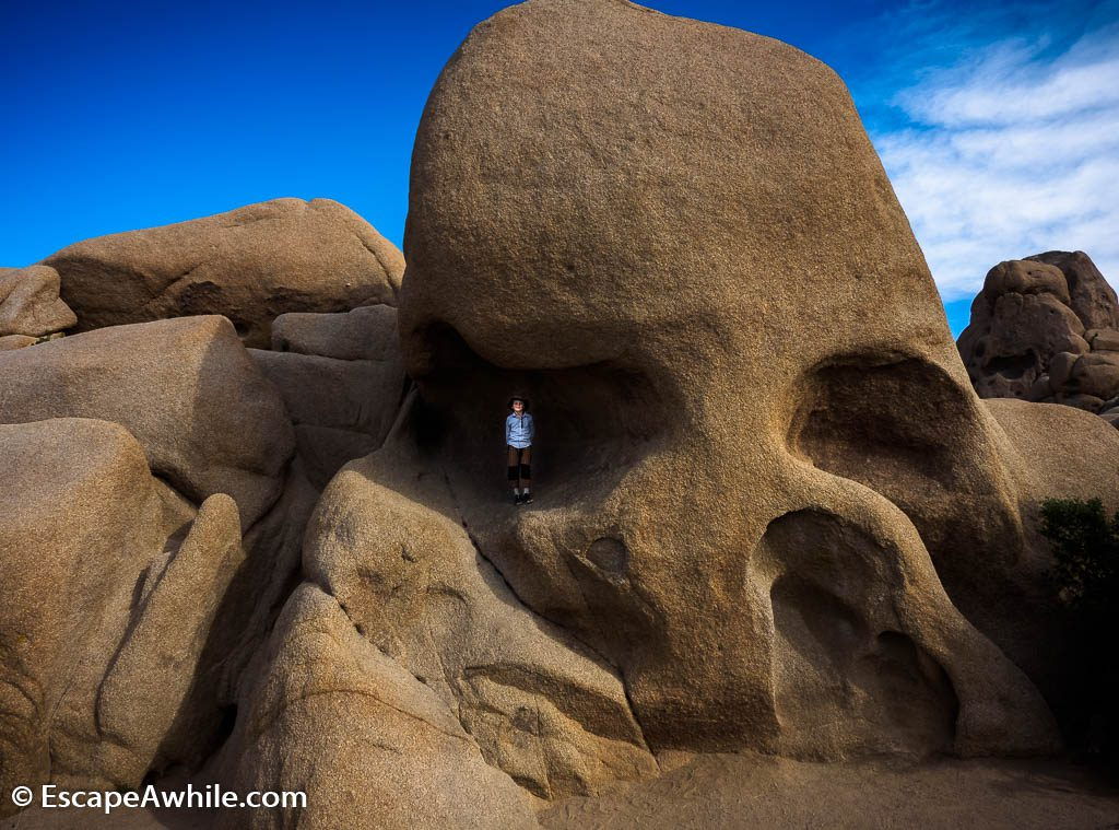 Skull Rock, one of the well visited rocks in the Joshua Tree NP.