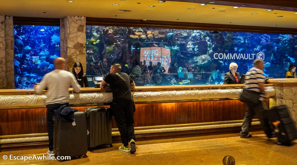 Saltwater aquarium behind the reception at Mirage Hotel, Las Vegas