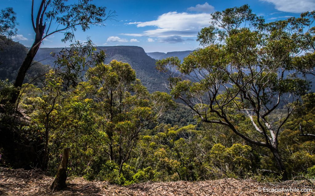 First glimpse of the Morton wilderness from the Wombat Hill Lookout trail