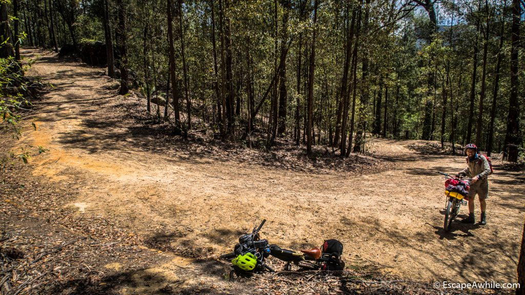 Switchbacks and a steep climb on the Griffins fire trail