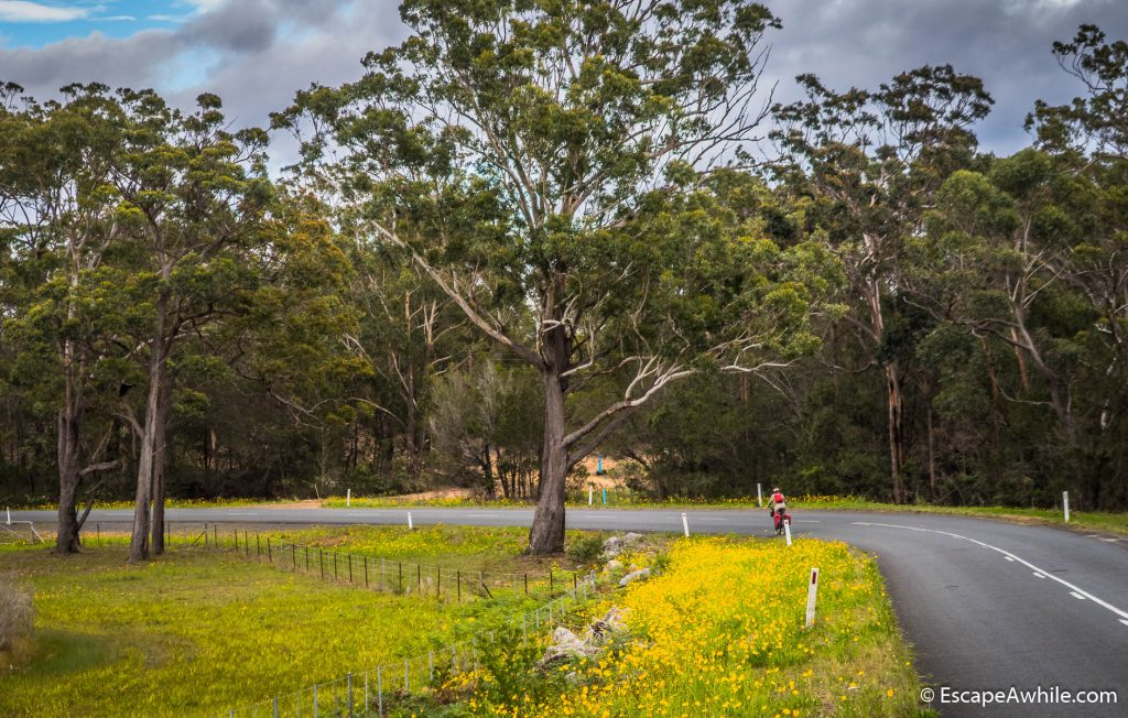 Morning ride out from Nowra on a Yalwal Road