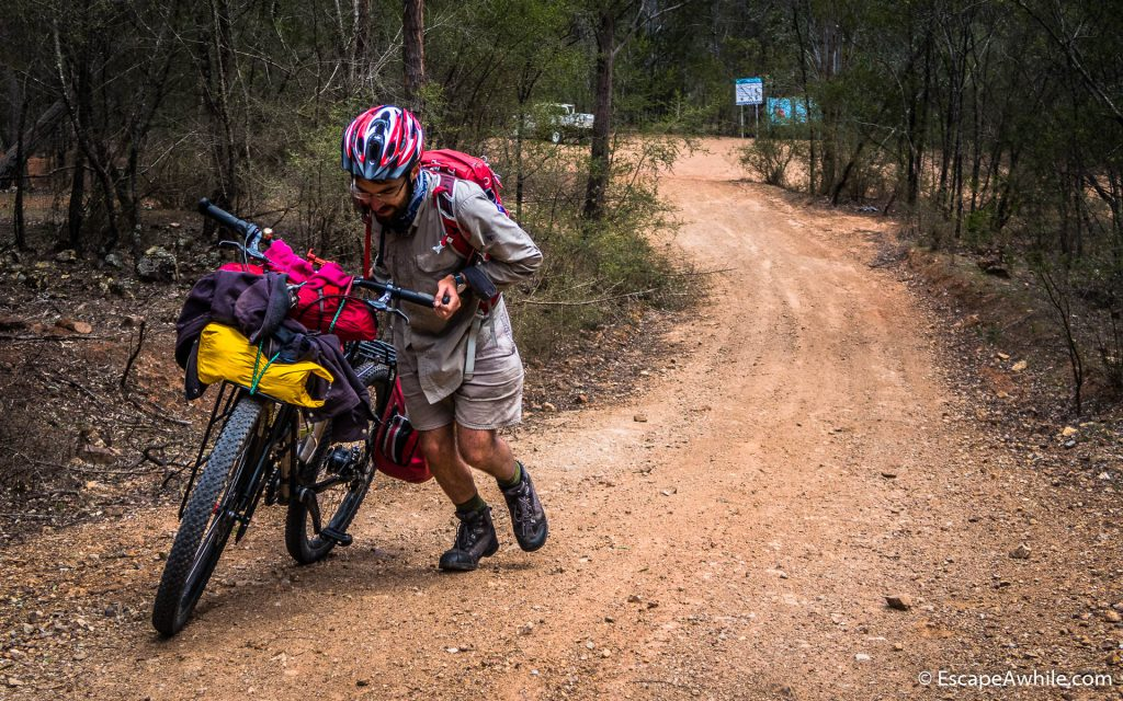 Climbing out of Yalwal valley on the Yarramunmun fire trail