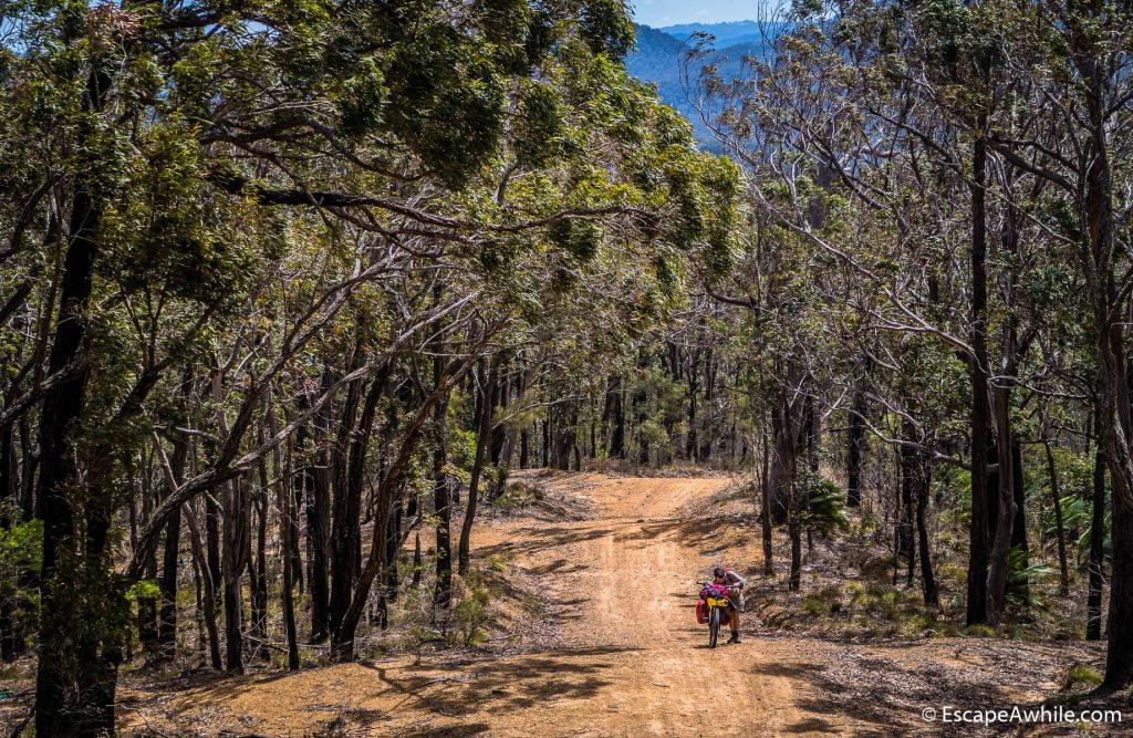 Yarramunmun fire trail gains an elevation and views, but is still a harh push-a-bike