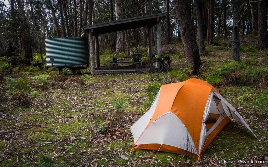 Sasafrass Camping area