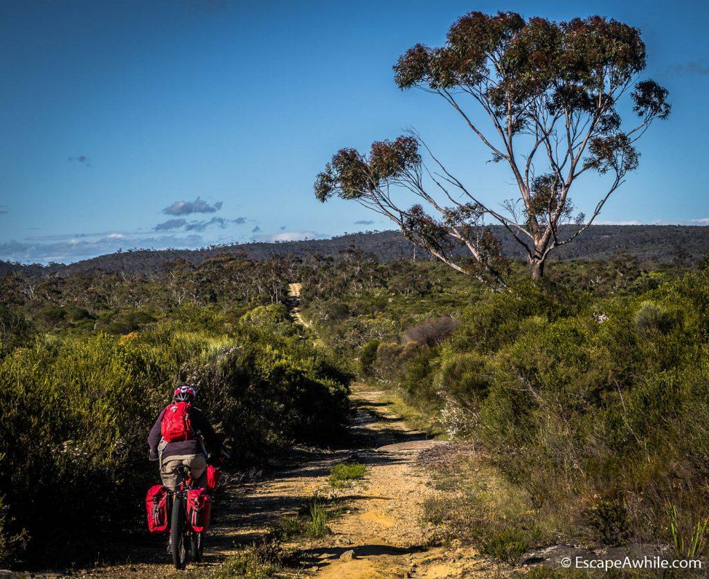 An easy ride and scenic views on an Endrick River fire trail