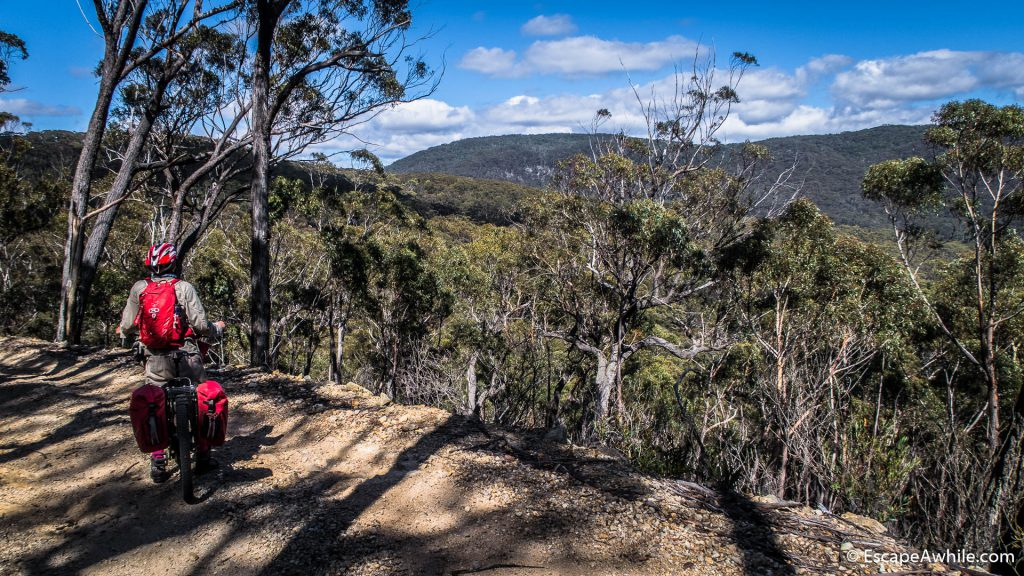 Views over the Tallaganda Forest ranges