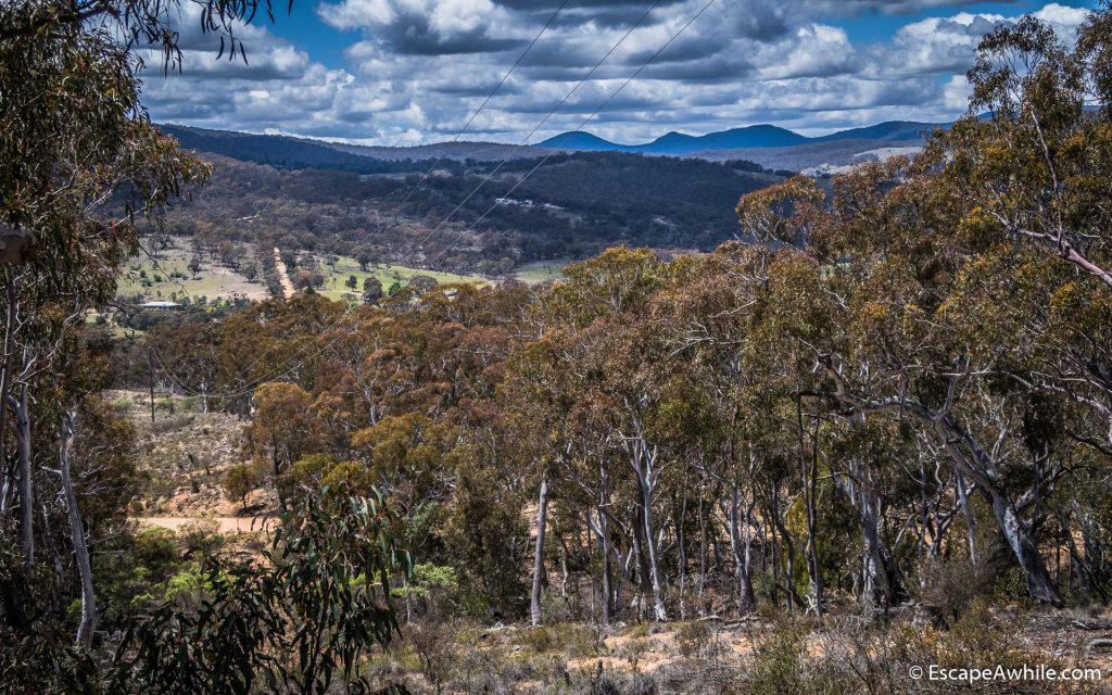 Views over Forbes Creek towards Tlaganda Forest