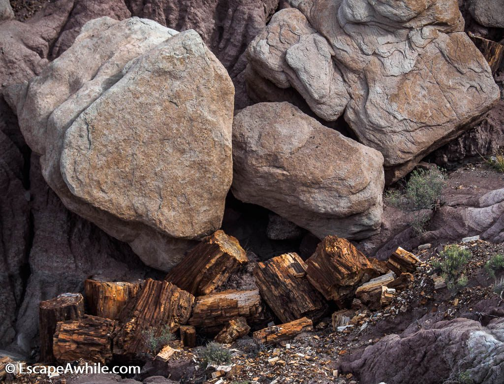 Rock litter along the Jasper Forest loop. Petrified Forest National Park